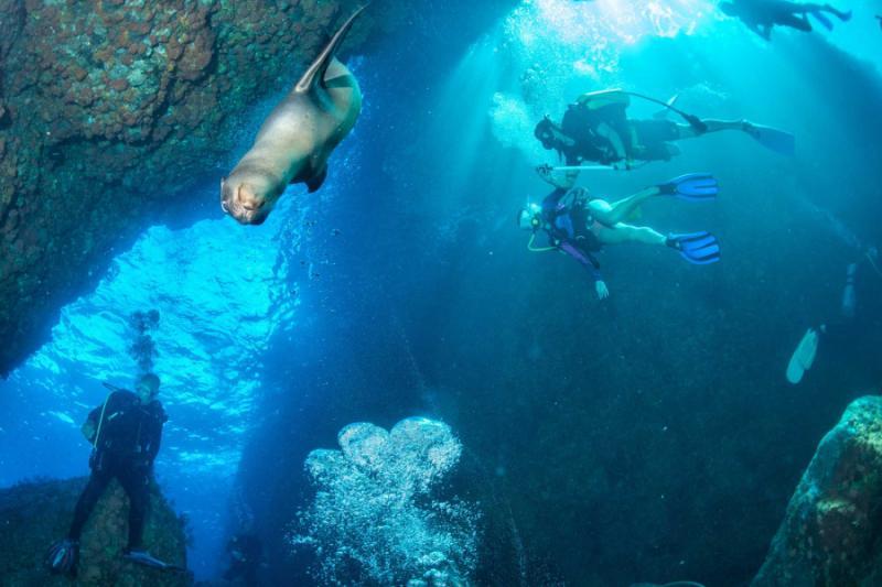 galapagos machu picchu tours reviews