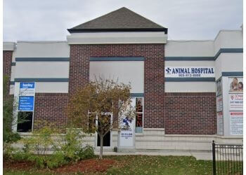 chahal veterinary services brampton reviews