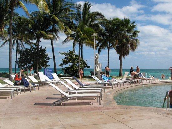 grand lucayan freeport bahamas reviews
