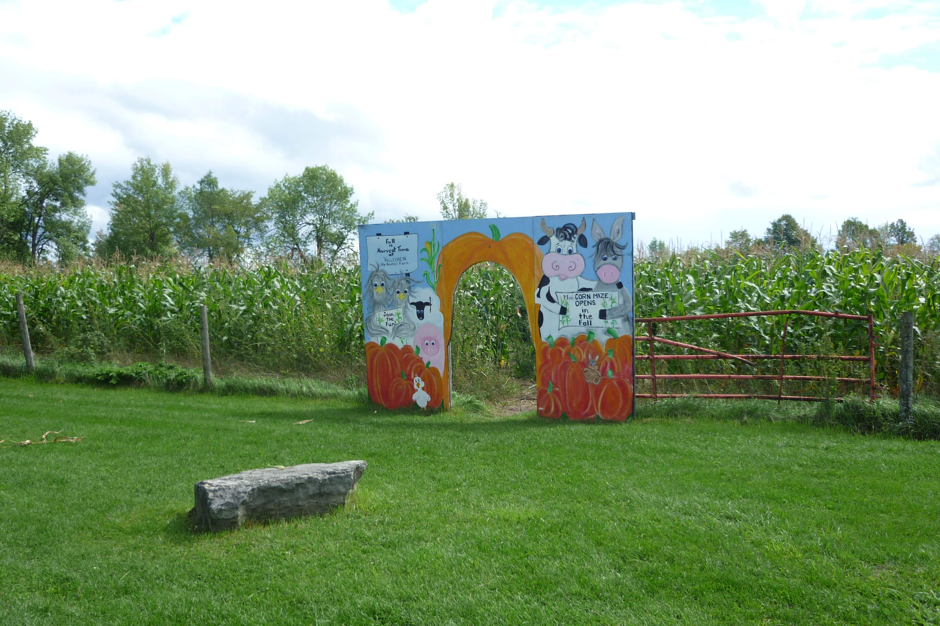 valleyview little animal farm review