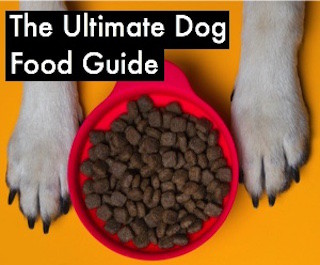 kirkland mature dog food review