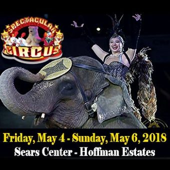 carden super spectacular circus reviews
