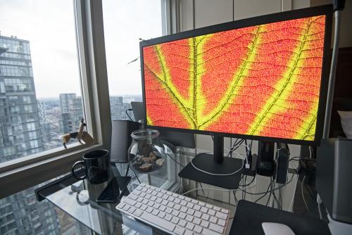 lg ultrafine 5k display review
