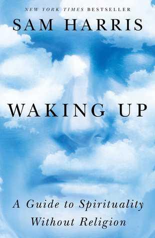 sam harris waking up review