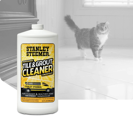 stanley steemer grout cleaning reviews